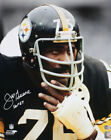 Pittsburgh Steelers Collecting and Fan Guide 88