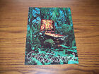 WILLIAMS JUNGLE LORD PINBALL MACHINE FLYER BROCHURE '81