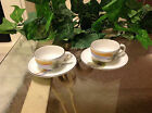 *** Meito China  Hand Painted SWAN  W/ Brown and Blue & Green*** Demitasse