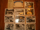 Marcamp Antique Photograph Scenes Williams Canon & Cave Of The Winds Manitou CO