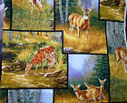 Rosemary Millette Wild Wings Whitetail Deer Outdoors Wildlife Cotton Fabric BTY