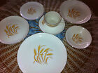 7PC VINTAGE GOLDEN WHEAT CHINA TABLE SETTING 22K GOLD TRIM HOMER LAUGHLIN