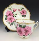 Vintage 1950s CABINET ROSINA English Tea Cup & Saucer Brush Gold Pink WILD ROSES