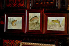 Set Of 3 Fish Paintings Rainbow Trout - Bass and Brown Trout  by listed artist