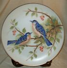 Collector Plate ~ Lefton China ~ Hand Painted Bluebirds