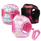 Cute Small Pet Dog Cat Puppy Chihuahua Vest Harness Lead Leash Set Pink S M L XL