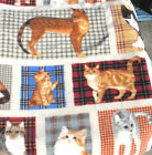 Cats on plaid squares - generous 1 3/4 yards Anti-Pill Fleece Patty Reed Designs