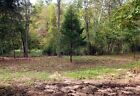 Owner Finance 8 acres in the MO Ozarks E Z TERMS