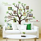 Large Family Tree Photo Frames Wall Decal Peel Stickers Art Removable Home Decor