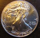 2013 US American Eagle one ounce silver round