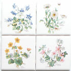 Botanical Herb Ceramic Tile 4 425 x 425 Aquilegia vulgaris Altha palustris