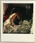 VINTAGE COLOR POLAROID PHOTO Figurative ABSTRACT Expressionist ART Nice Image A
