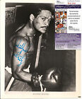 1525193996064040 1 Boxing Photos Signed
