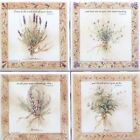 Botanical Herb Ceramic Tile set 4 of 425 x 425 Kiln Fired Back Splash Decor
