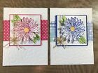Stampin Up Daisy Happy Birthday Greeting CARDs KIT Of 4 Pink