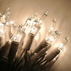 20 CLEAR Christmas mini lights WHITE wirecraft lights wreaths bo