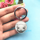Pig Black and White Art Photo Tibet Silver Key Ring Glass Cabochon Keychains 396
