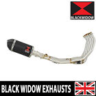 R6 YZF600 06-16 De-cat Exhaust System + Oval Black steel Silencer + Carbon BC20V