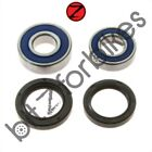 Wheel Bearing and Seal Kit Rear ABR Honda NSR 125 R 1997-2002