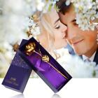 Home decoration flower Valentines Day Gift 24K Gold Plated Rose Flower Romantic