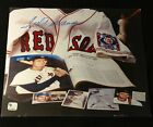 TED WILLIAMS Signed Autographed 8
