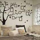 Family Tree Wall Sticker Decal Mural Art Removable Home Office DIY Wallpaper NEW