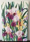 Original SIGNED Floral Watercolor by JAN FORD Iris Flowers Unframed 225x15