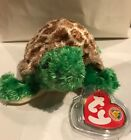 TY Beanie Baby Tortuga the turtle BBOM *New*Free Shipping*