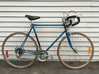 VINTAGE Blue Raleigh Record 10 SPEED BICYCLE good working condition local pickup