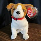 TY Exclusive Beanie Baby of the Month Kippy the Dog,,,MWMT