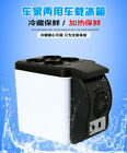 Portable 6L Car Fridge Thermoelectric Cooler Warmer Travel  Car Refrigerator