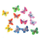 Lots of 12 Simulation Butterfly Figures Animal Insects Models Children Toy GiftH