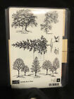 Stampin Up Wooden Stamp Set Lovely as a Tree