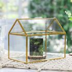 Large Glass Geometric Terrarium Flower Pot Garden Decor Succulents Plant Pot