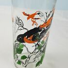 VTG Federal Glass Company Oriole Drinking Glass 5.25
