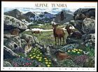 2007 ALPINE TUNDRA Nature of America Series 9th Mint Sheet 10 41 Stamps 4198
