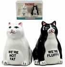 Collectibles Feline Black And White Cute Fluffy Cats Salt  Pepper Shak