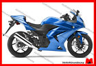 2008 12 Ninja250R EX250 Ninja FULL FAIRING KIT with WINDSHIELD FOR KAWASAKI BP