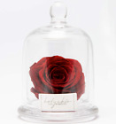 Forever Flower Red Rose  Preserved 3 W Dome Glass Case Mothers Day Gift