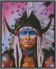 Native American Indian Worrier Counted Cross Stitch COMPLETE KIT  21 155