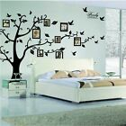 Large Family Tree Wall Decal Peel  stick vinyl sheet easy to install  apply