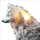 Full Drill 5D Diamond Painting Sunrise Wolf Embroidery Decoration DIY Handcraft