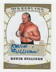 2016 Topps WWE NXT Wrestling Cards 18