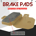 Motorcycle Rear Brake Pads for PIAGGIO X8 125 0 04-05 X9 125 Evolution 05-07