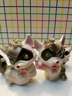 Vintage Fancy Raccoons  Salt  Pepper Shakers  Made in Japan  Collectible