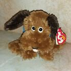 TY Beanie Baby - GRAVY the Dog (Bob Evans Exclusive) (6 inch) -MWMTs Stuffed Toy