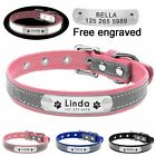 Reflective Leather Personalized Dog Collar ID Tag Custom Engraved Name XS S M