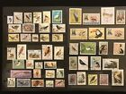 BIRDS  ORNITHOLOGY ON STAMPS TOPIC Stamp Collection  lot 9  FREE SHIPPING