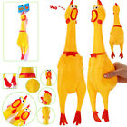 16 Squeeze Shrilling Screaming Rubber Chicken Pet Dog Bite Toy Squeaker Chewing