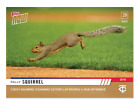 2019 Topps Now #724 Cocky Rally Squirrel sparks Twins 11-Run Offensive PR-888